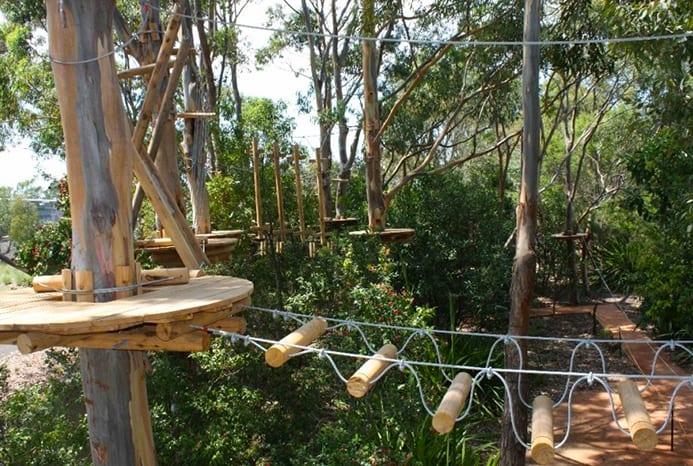 מה יש לעשות בפארק חבלים - ג׳ונגל אדוונצ׳ר